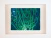 Kunstvermittlung Klement, Kirsten Framing, Gruene Reihe, 4 von 4, 23x28,5x4,5cm